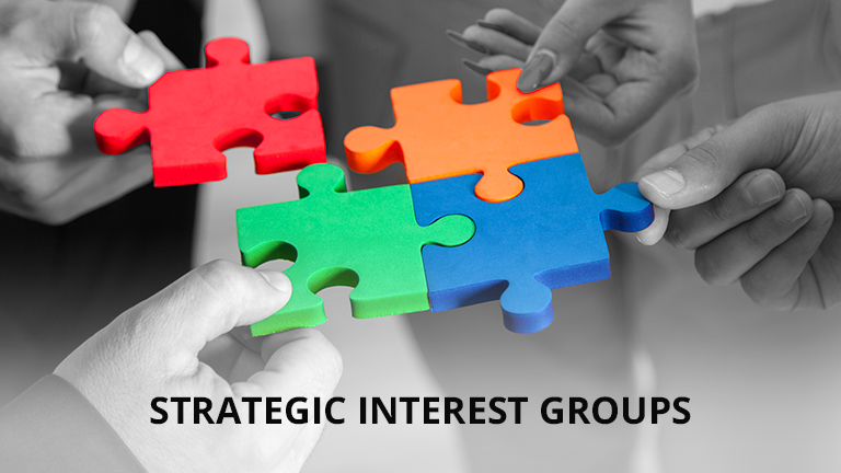 Strategic Interest Groups